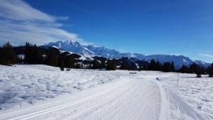 les saisies pistes ski de fond nordique